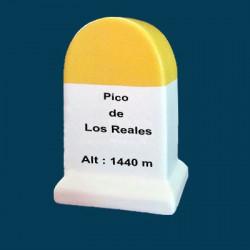 Pico de Los Reales